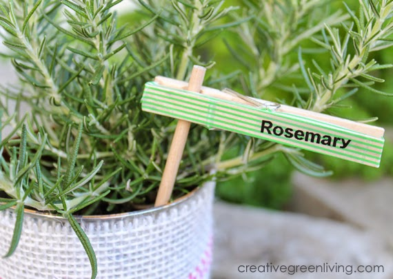 Plant Markers From Recycled Clothespins