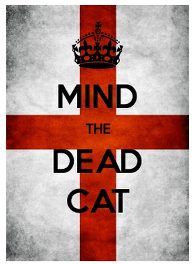 mind-the-dead-cat