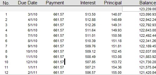 Notice how little of our first year's payments are going towards principle.