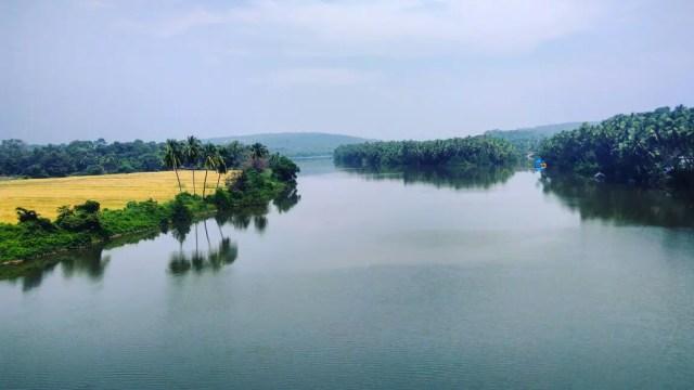 Goan backwaters