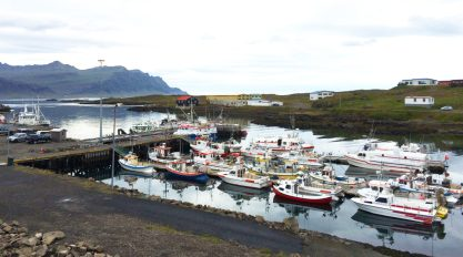 east-iceland-to-the-edge-of-the-artic-38