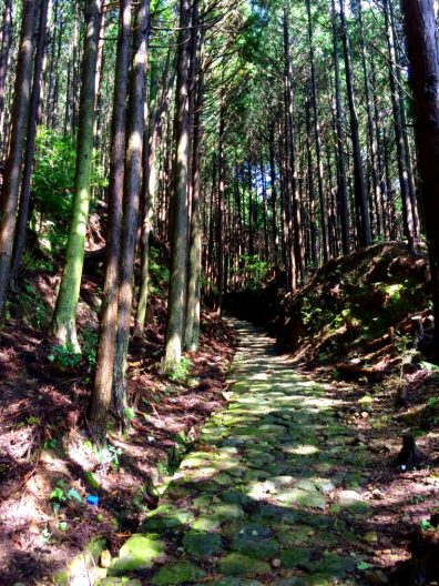 Ancient trails | Gay Couple Pilgrimage Kumano Kodo Japan © CoupleofMen.com