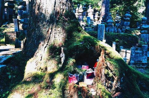 Okunoin Cementery | Koyasan temples Japanese Buddhism Mount Kõya © CoupleofMen.com