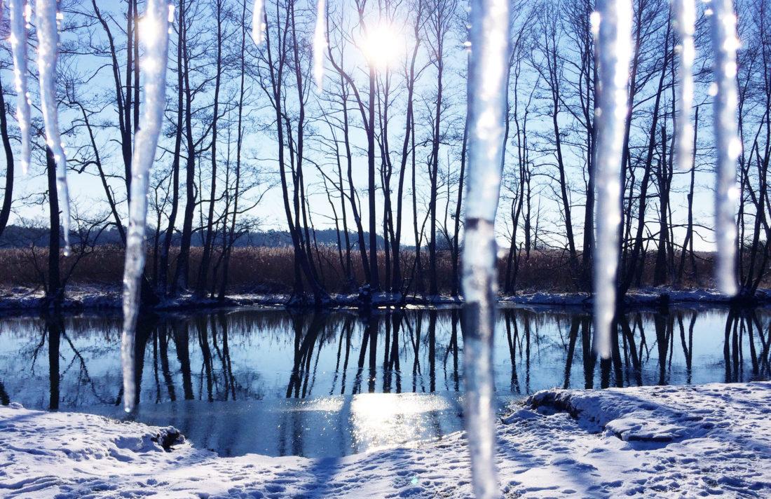 Winter Road Trip Berlin Spree Forest Brandenburg © CoupleofMen.com