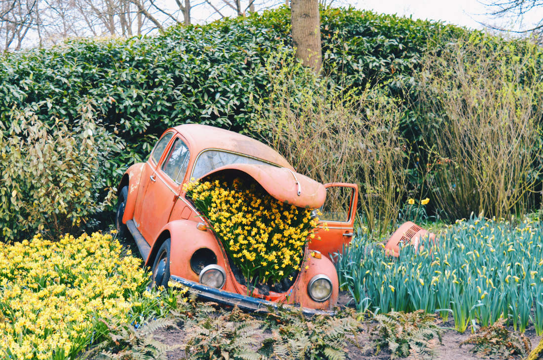 Don't forget to buy a parking ticket ;)   Keukenhof Tulip Blossom Holland © Coupleofmen.com