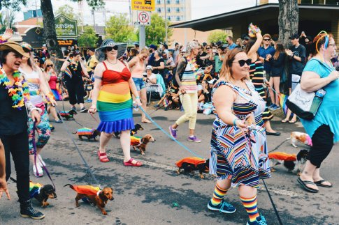 Wiener Dogs club - sausages dressed with rainbow capes | Gay Edmonton Pride Festival © Coupleofmen.com
