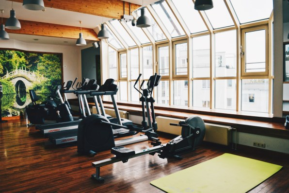 Nature-inspired interior of the Fitness Studio with a view | Scandic Berlin Kurfürstendamm gay-friendly Hotel © Coupleofmen.com