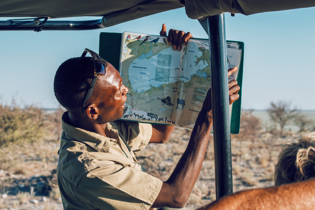 Our guide knows everything about the inhabitants of the park and is very proud to show us Etosha in Namibia © Coupleofmen.com