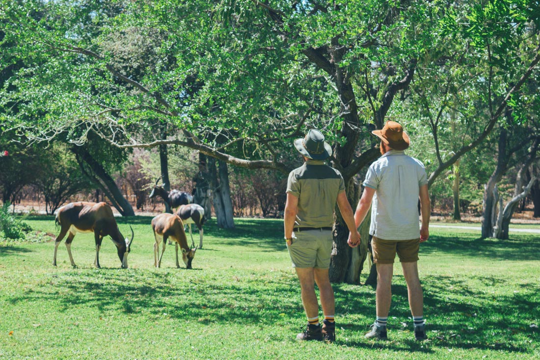 Gay Couple Travel Blogger hand-in-hand watching Game on the grounds of Mokuti Lodge at the East Gate of Etosha in Namibia © Coupleofmen.com