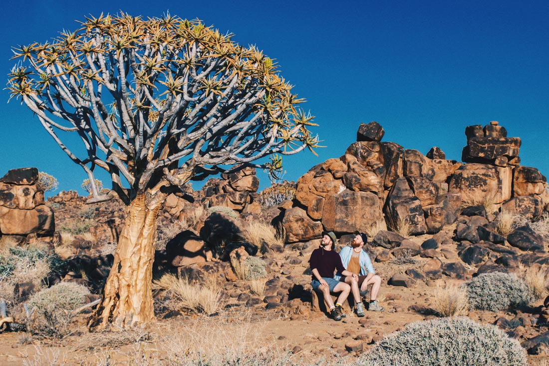 Zugreise Afrika Sitting next to old giants: These special trees called Quiver trees are saving huge amounts of water and are several hundreds of years old © Coupleofmen.com