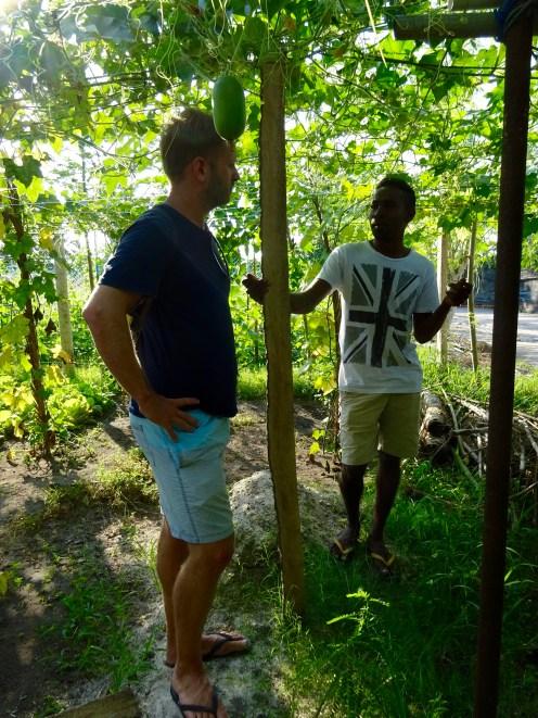 Me and Abdullah in a papaya plantation
