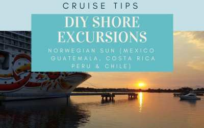 Norwegian Sun South America Cruise Review | DIY Shore Excursions