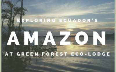 Ecuador Amazon Adventure at Green Forest Ecolodge