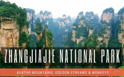 Zhangjiajie National Forest Park Travel Guide