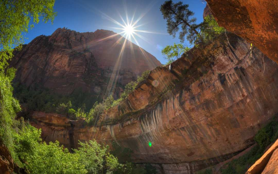 Emerald Pools | Read this before Hiking Zion National Park