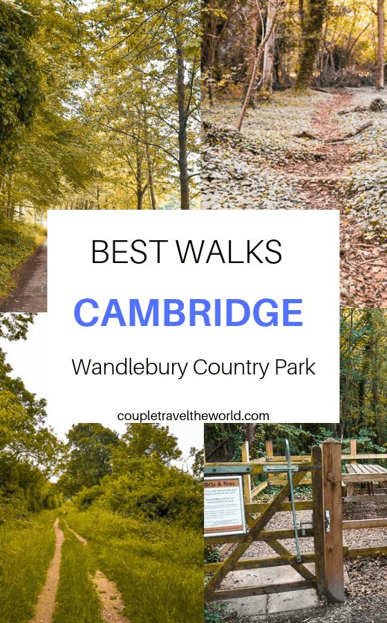 best-walks-cambridge-wandlebury-park
