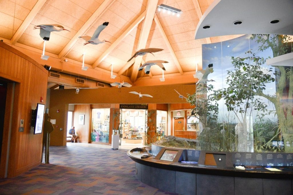 Ernest-F-Coe-Visitor-Center-wildlife-experience