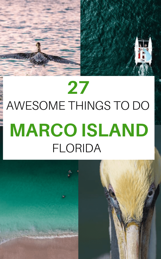 things-to-do-in-marco-island