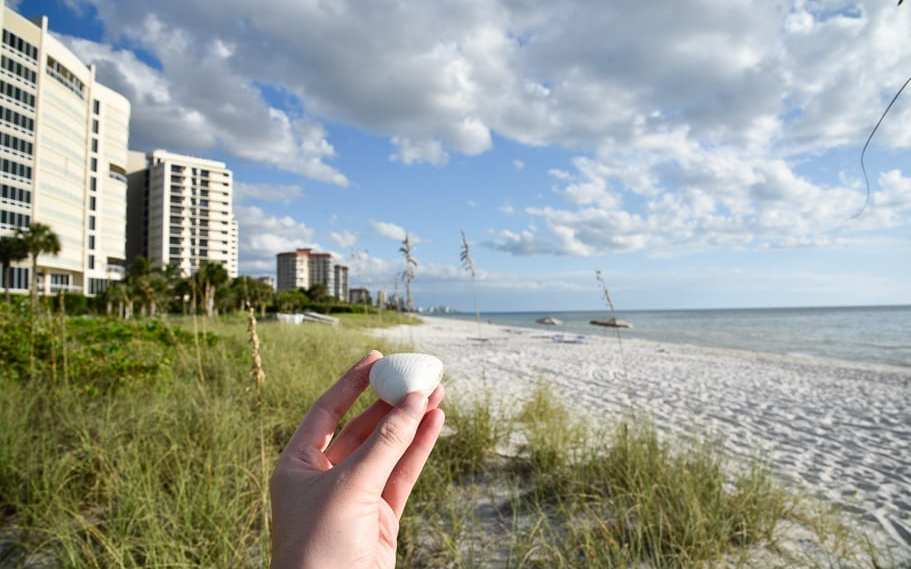 10 Best Naples Beaches Florida (Which we loved and which to avoid)