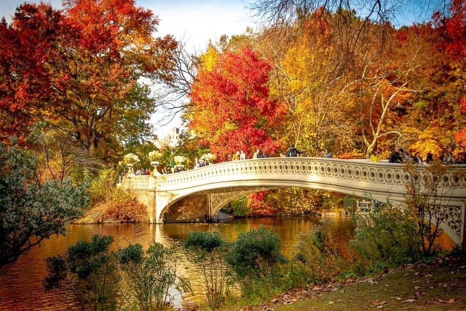 fall date ideas nyc