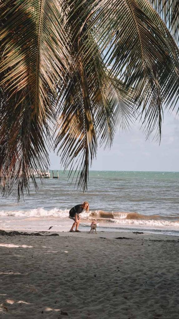 key-west-beaches-dog-beach