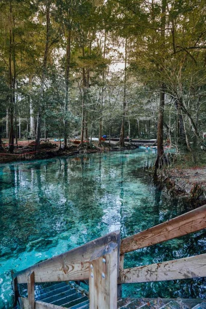 ginnie-springs-swimming