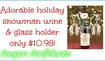 Cutest wine and glass holder for a LOW price too!