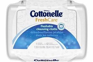 79¢ Cottonelle Wipes at Publix!