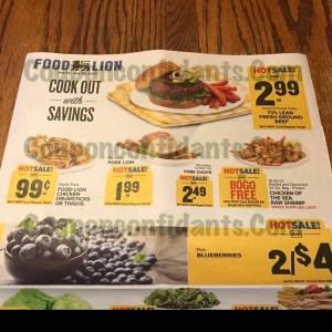 Food Lion AD July 22-28