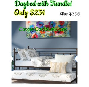Daybed with Trundle Flash Deal $231!!