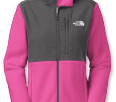 Women's North Face Denali Fleece Jacket in Various Colors only $88.83 Shipped (Reg. $179)