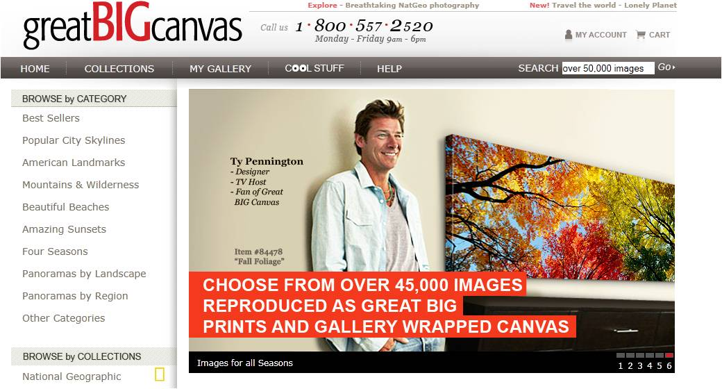 Great Big Canvas Coupons Art