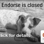 Endorse Goes Dark: Coupon App Suddenly Shuts Down