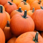 Pumpkin Foes Offer Coupons, in Pumpkin Spice Backlash