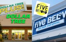 Discount Stores Double Down on Higher-Priced Items