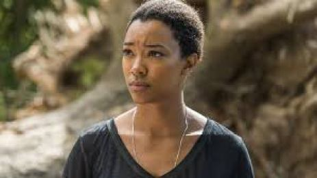 Image result for sasha twd
