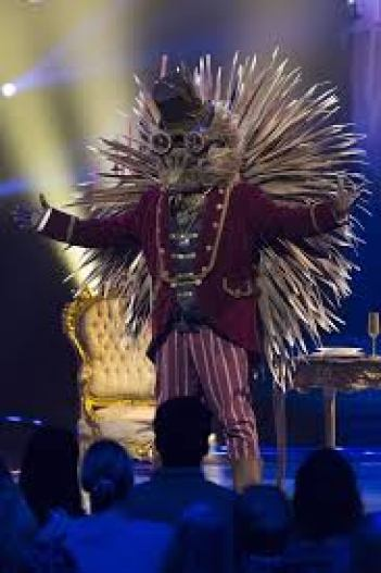 Image result for hedgehog the masked singer
