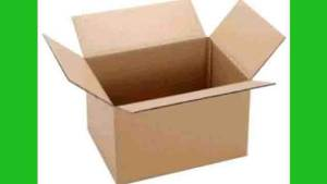 Sundarban Courier Service Carton Box Packaging Cost
