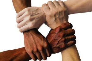 diversiteit in team