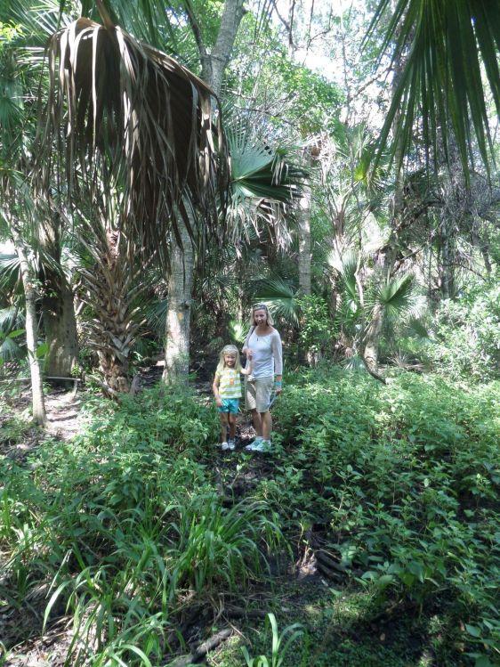 Fern Forest Nature Center