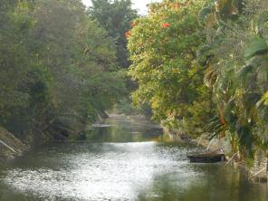 Rivière près de Wayside Park - Coral Gables - Miami - Floride