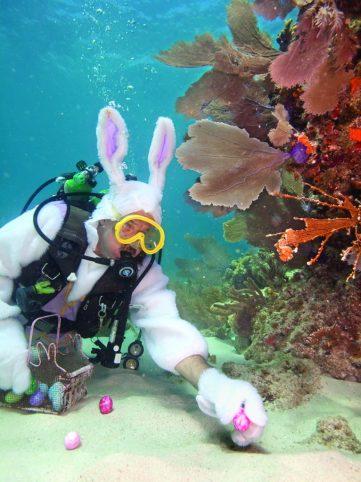 fêtes de Pâques à Miami Floride