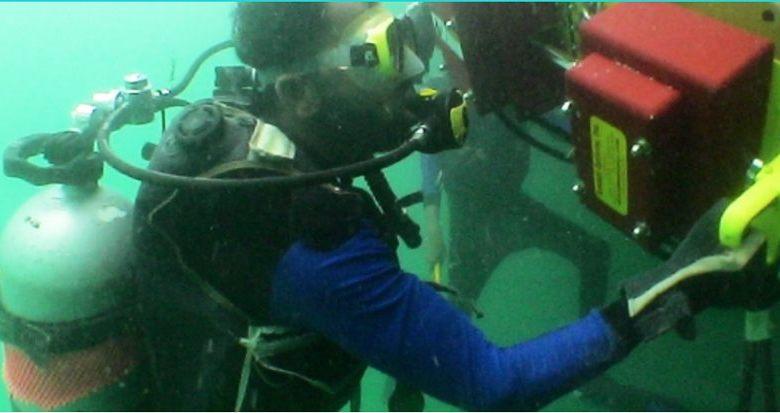 Plongée sous-marine Floride