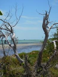 Paysage à Bahia Honda dans les îles Keys de Floride
