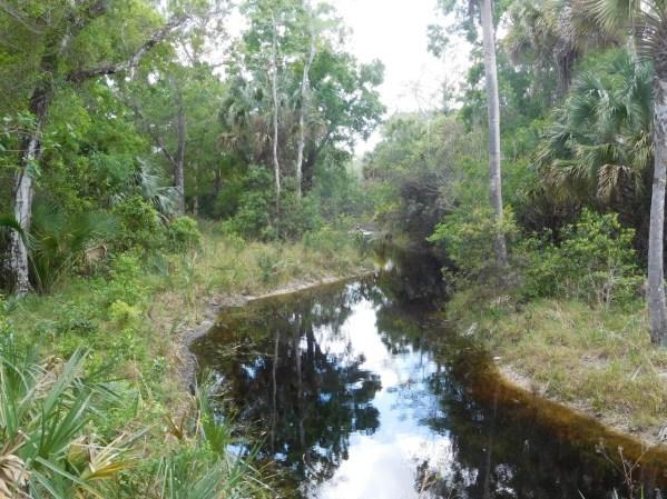 Rivière à Riverbend Park / Jupiter / Floride