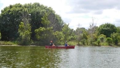 Photo of Riverbend park : les Everglades sur Jupiter