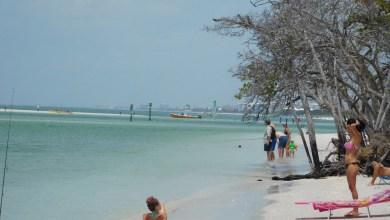 Photo of Les 25 endroits à voir absolument en Floride : tous les incontournables !