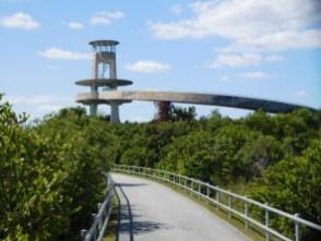 Tour d'observation de Shark Valley / Parc National des Everglades