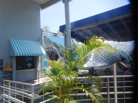 Mote Marine Laboratory & Aquarium, sur Lido Key à Sarasota