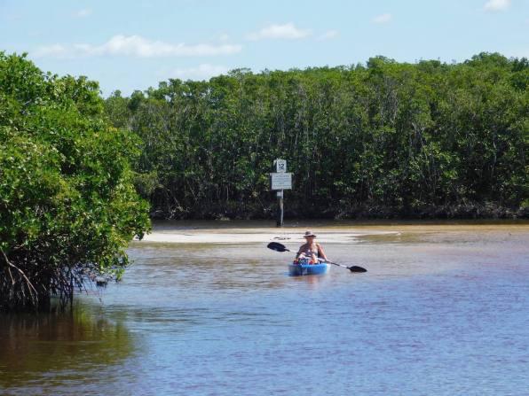 Kayak dans le lagon de Clam Pass Park à Naples en Floride